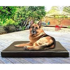 diy outdoor dog bed outdoor dog bed water resistant deluxe indoor outdoor orthopedic pet dog bed