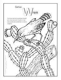 Cactus Wren Coloring Page More Fun