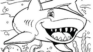 Sea Animal Coloring Pages Water Animals Coloring Pages Baby Sea