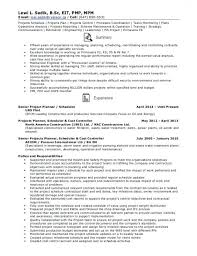 Ms Project Scheduler Sample Resume Mesmerizing Download Our Sample Of Best Production Scheduler Sample Resume Www