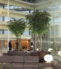 Ascott Ltd for top quality artificial trees for interior design projects