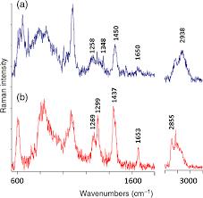 by raman probe spectroscopy