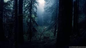 Dark Forest Desktop Wallpapers ...