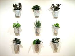 indoor wall plant holders wall mounted plant holder large size of wall planters indoor wall herb