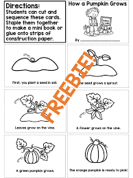 FREE sequencing worksheet to support a Life Cycle of a Pumpkin ...