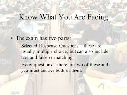 can one person make a difference essay can one person make a how can one person make a difference essay