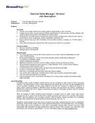 senior it operations manager job description service director job description