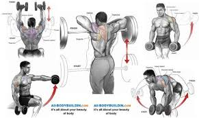 Bodybuilding Workout Chart For Men Pdf Free Pdf Body Transformation Challenge Workouts And Diet