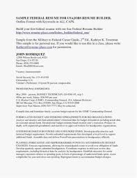 Resume Writing Services Best Of 21 Federal Resume Format