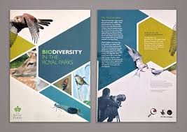 unique brochures biodiversity in the royal parks beautiful brochure design example
