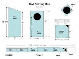 screech owl house plans how to build a