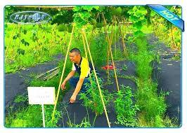 vegetable garden weed barrier best cover for superb