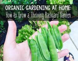 organic gardening how to grow a thriving backyard garden