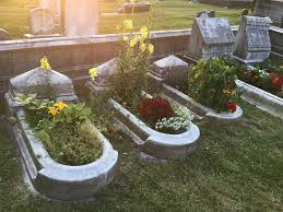 the plants that the gardeners use in the graves are all historically accurate