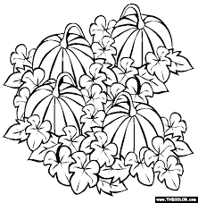 Pumpkin Patch Coloring Page Free Pumpkin Patch Online Coloring