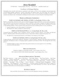 Banking Loan Resume Best Bank Resume Professional Cv Template Banking Usgenerators