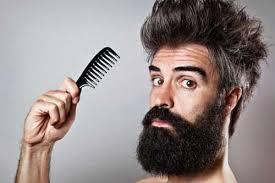 Resultado de imagem para barba de lenhador