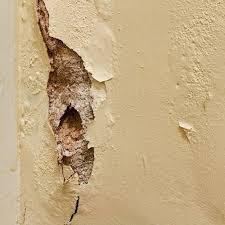 diagnose common plaster problems