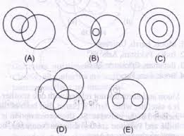Venn Diagram Of Relationships Ch 7 Logic Based Venn Diagrams Exercise 1 Verbal