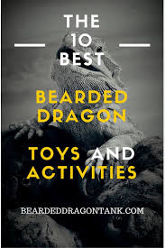 best ideas about dragon toys pot agrave lait igloo bearded dragons can get depressed or bored easily prevent that these 10 toys