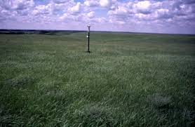 grass field at night. Konza Prairie Field Exercise July 11 To 18 1999 Grass At Night R
