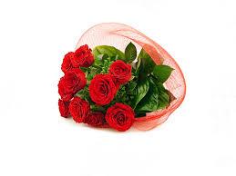Roses Flowers Wallpapers Rose Wallpapers Hd