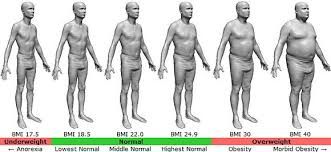 Bmi Calculator Of Body Mass Index For Men And Women