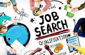Job Search Qualification Resume Recruitment Hiring Application