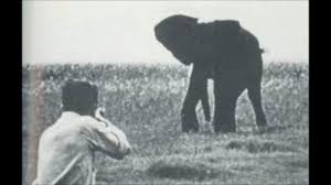 shooting an elephant by george orwell video dailymotion