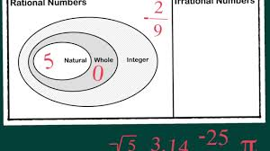 Real Numbers Venn Diagram Worksheet Real Numbers Venn Review