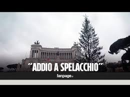Risultati immagini per spelacchio di roma