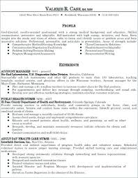 Career Summary Examples For Resume Stunning Example Of Resume Summary Example Resume For Nurses Examples Of