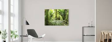 Bamboe Populaire Canvasprints Photowall