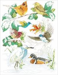 Birds Of A Feather Cross Stitch Chart Kooler And 50 Similar
