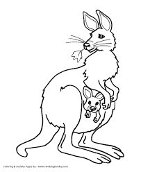 Small Picture Female Kangaroo and baby Coloring Pages Kangaroo Coloring Page