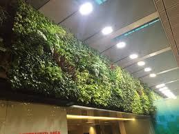 Vertical Garden Green Wall Vadodra