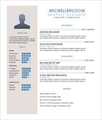 Contemporary Resume Word Template Download