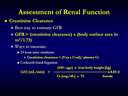 5 sment of renal function creatinine clearance best way to estimate gfr