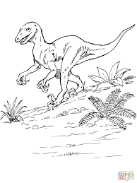 Oviraptors Stealing Dinosaurs Eggs Coloring Page Free Printable