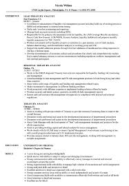 Treasury Analyst Resume Treasury Analyst Resume Samples Velvet Jobs 1