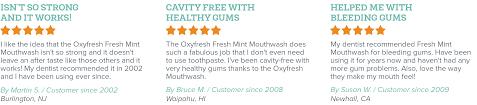 Fresh Breath Fresh Mint Mouthwash