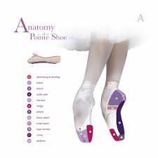 Anatomy Of A Pointe Shoe In 2019 Pointe Shoes Ballet