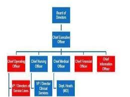 Ptt Organization Chart Organizational Structure Ppt
