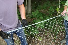 chain link fence installation.  Chain Insert Tension Bar Into Fence Fabric With Chain Link Fence Installation