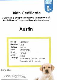 dog birth certificates dog birth certificates best sample dog birth certificate monpence