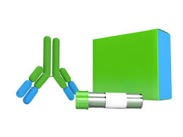Bluetounge Virus Order Genesigs Bluetongue Virus Easy Kit On Zageno