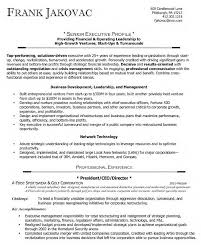 ceo sample resumes template ceo sample resumes