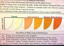 Heat Stress Urine Color Chart