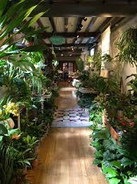 retailers like to be on trend so it was never going to be long before plants took the place of the taxidermy glass cloches and squirrel cage light bulbs