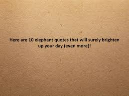 10 Inspirational Elephant Quotes You Need Right Now